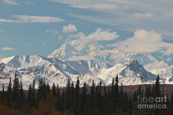 Denali Print featuring the photograph Denali In Broad Pass by Donna Quante