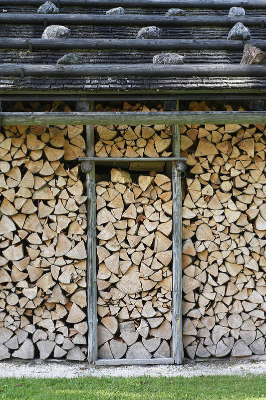 Firewood Print featuring the photograph Firewood Stack by Frank Tschakert
