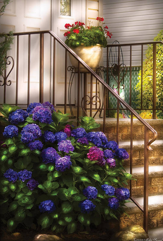 Savad Print featuring the photograph Flower - Hydrangea - Hydrangea And Geraniums by Mike Savad