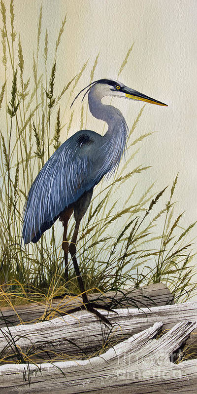 Great Blue Heron Print featuring the painting Great Blue Heron Splendor by James Williamson