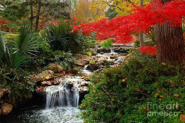 Landscape Print featuring the photograph Japanese Garden Brook by Jon Holiday