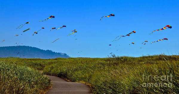 Haybales Print featuring the photograph Kites by Robert Bales