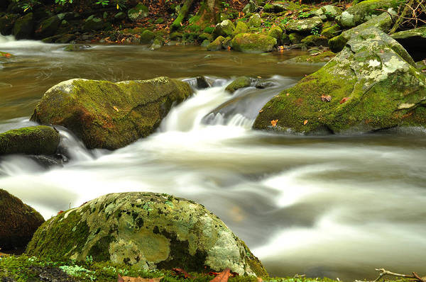 Print featuring the photograph Mountain Stream 3 by William Jones