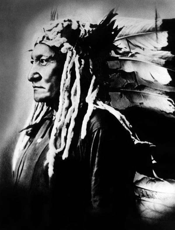 1880s Print featuring the photograph Native American Sioux Chief Sitting by Everett