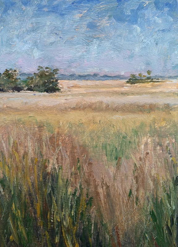 Landscape Print featuring the painting Ochlockonee Marsh by Pam Talley