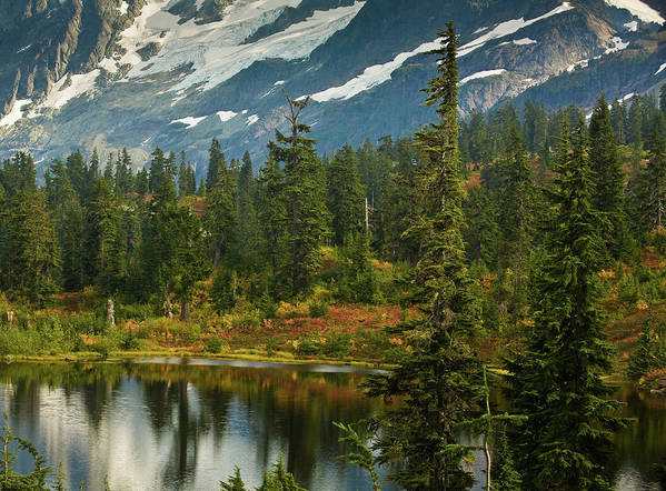 Picture Lake Print featuring the photograph Picture Lake Vista by Mike Reid