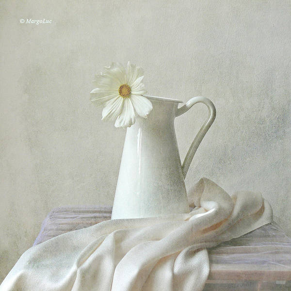 Square Print featuring the photograph Still Life With White Flower by by MargoLuc