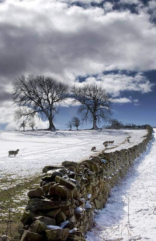 Cloud Print featuring the photograph Stone Fence, Weardale, County Durham by John Short