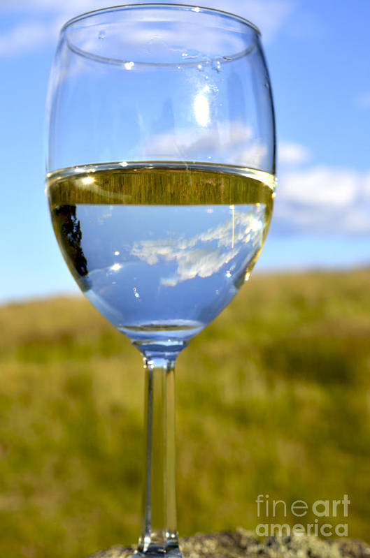 Pinot Grigio Print featuring the photograph The Glass Is Half Full by Thomas R Fletcher