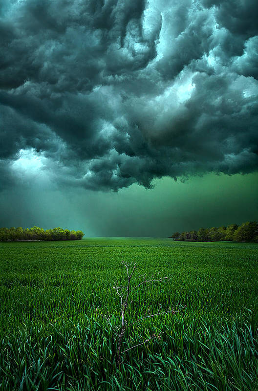 Storm Print featuring the photograph There Came A Wind by Phil Koch