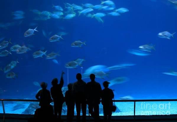 Tank Print featuring the photograph Visitors At An Aquarium by Yali Shi