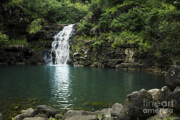 Falls Print featuring the photograph Waimea Falls by Charmian Vistaunet