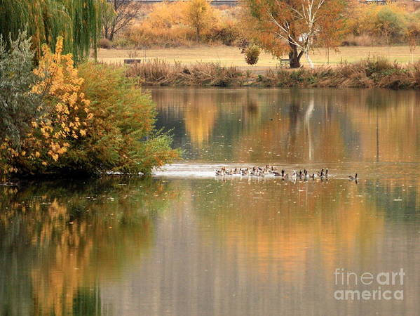 Prosser Print featuring the photograph Warm Autumn River by Carol Groenen