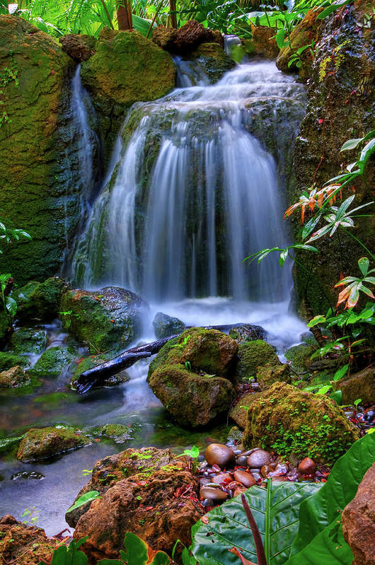 Vertical Print featuring the photograph Waterfall by Patti Sullivan Schmidt