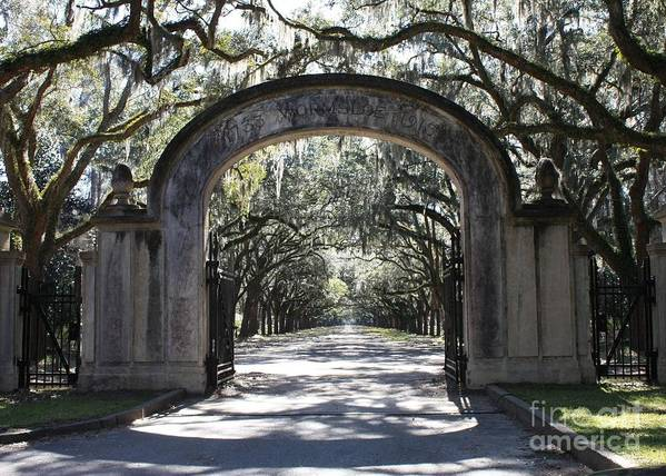 Gate Print featuring the photograph Wormsloe Plantation Gate by Carol Groenen