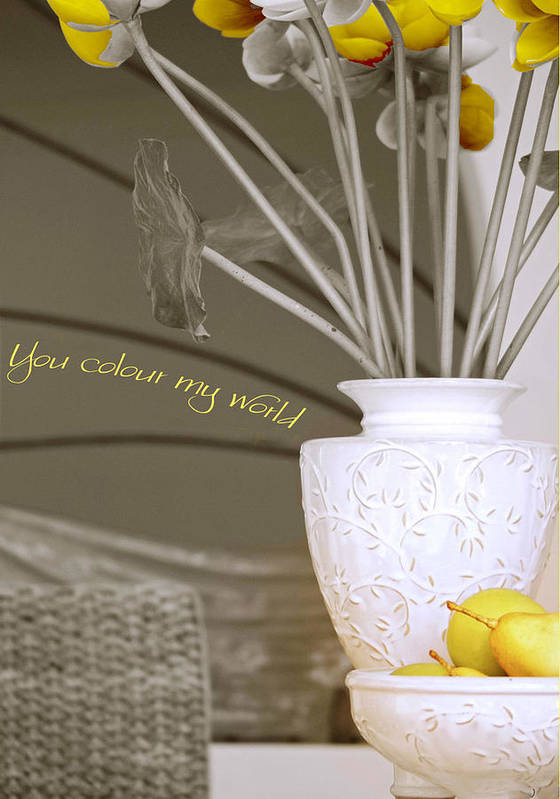 Still Life Print featuring the photograph You Color My World by Holly Kempe