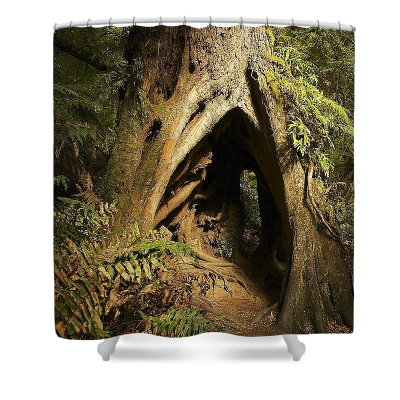 Curtains Ideas target kids shower curtain : to All Images Shop gt Shower Curtains gt Australia Shower Curtains