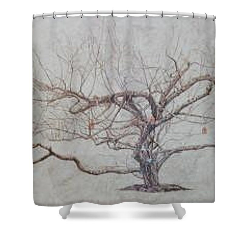Apple Tree Shower Curtain featuring the painting Apple Tree In Winter by Leah Tomaino