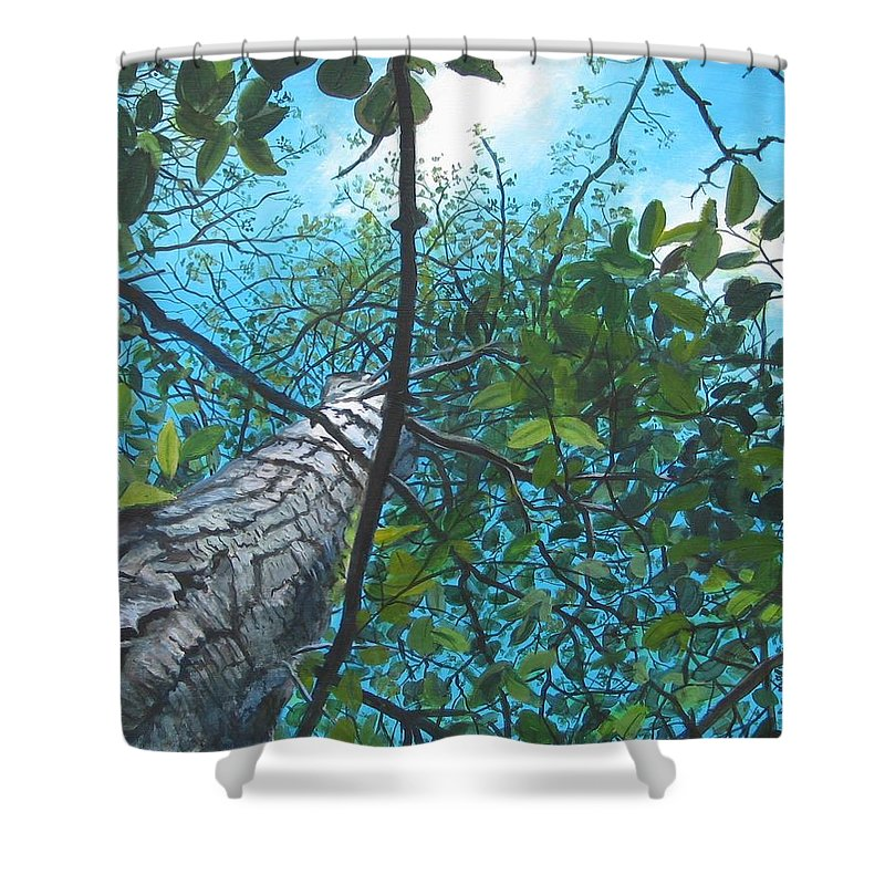Landscape Shower Curtain featuring the painting Skyward by William Brody