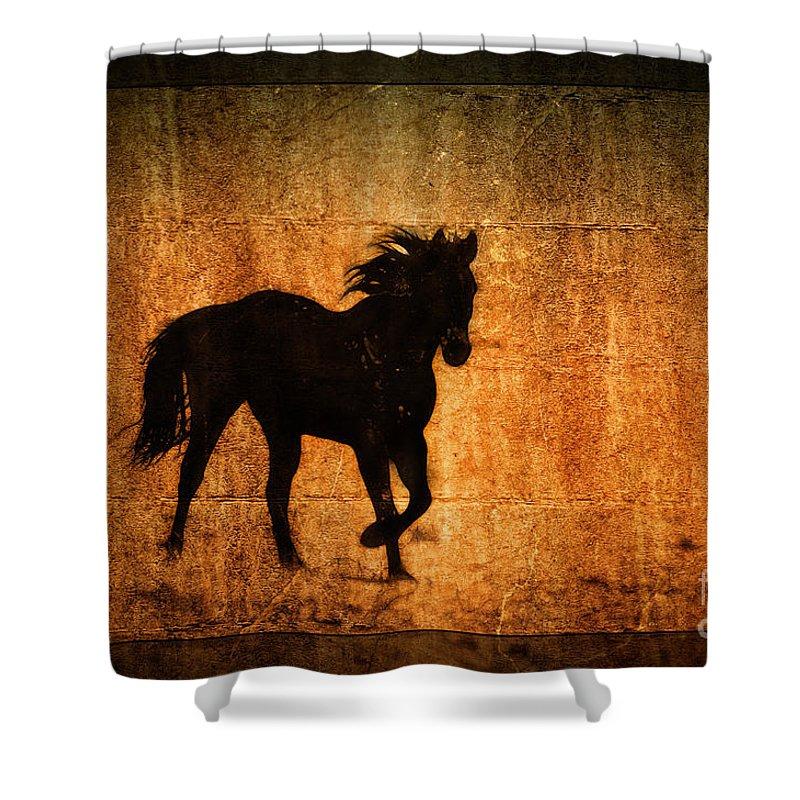 Wild Horse Art Shower Curtain For Sale By Wildlife Fine Art