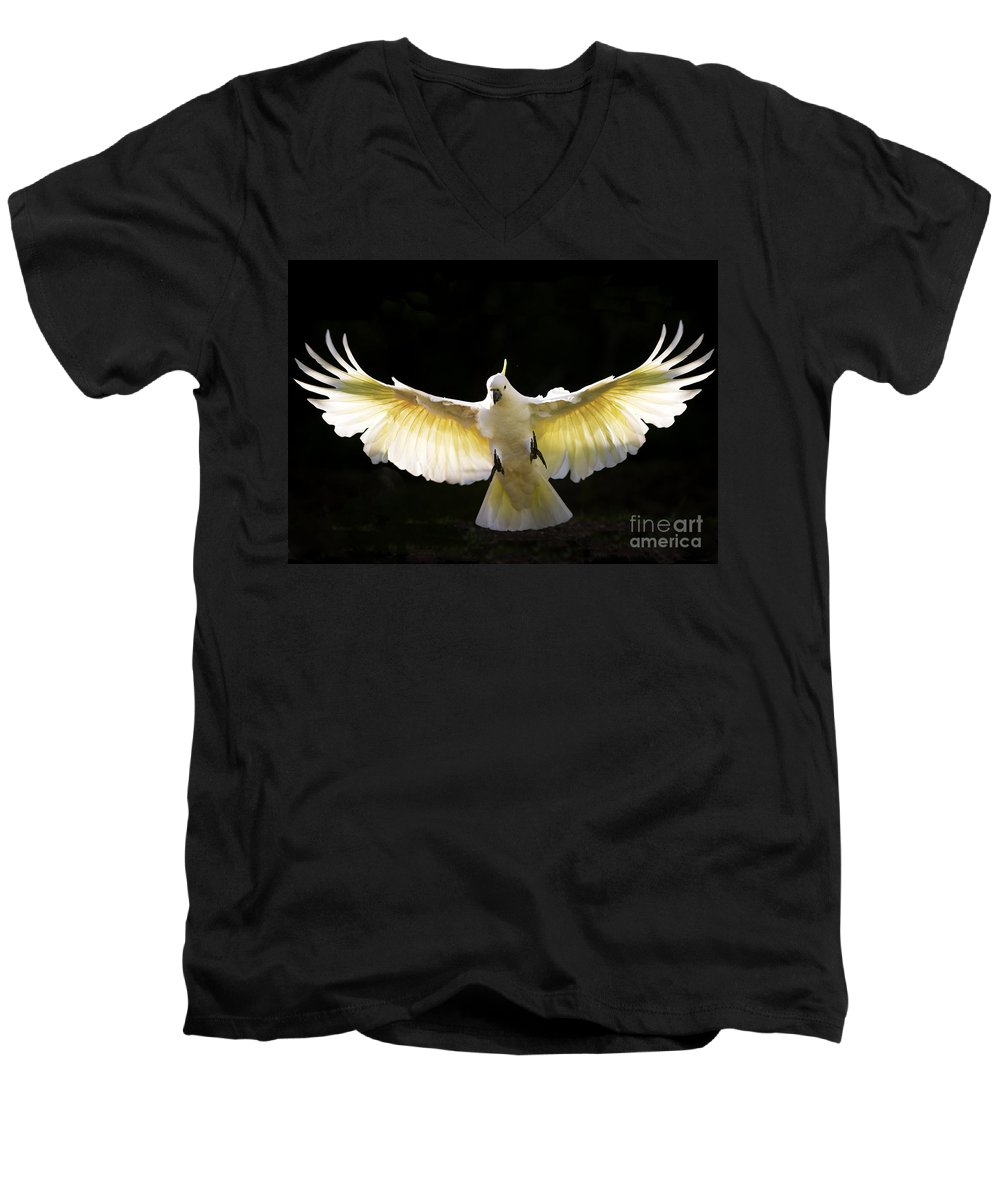 Sulphur Crested Cockatoo Australian Wildlife Men's V-Neck T-Shirt featuring the photograph Sulphur Crested Cockatoo In Flight by Avalon Fine Art Photography