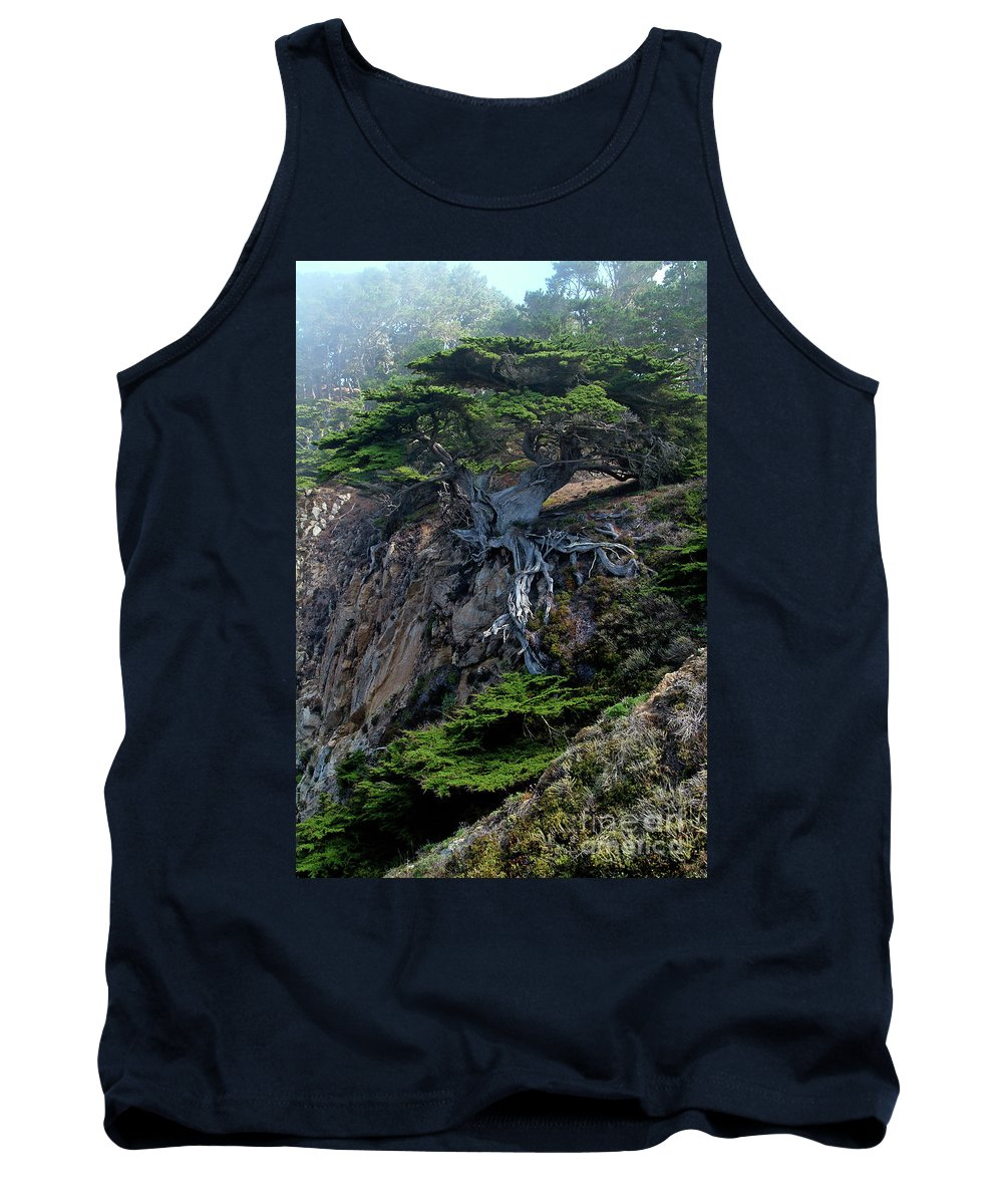 Landscape Tank Top featuring the photograph Point Lobos Veteran Cypress Tree by Charlene Mitchell
