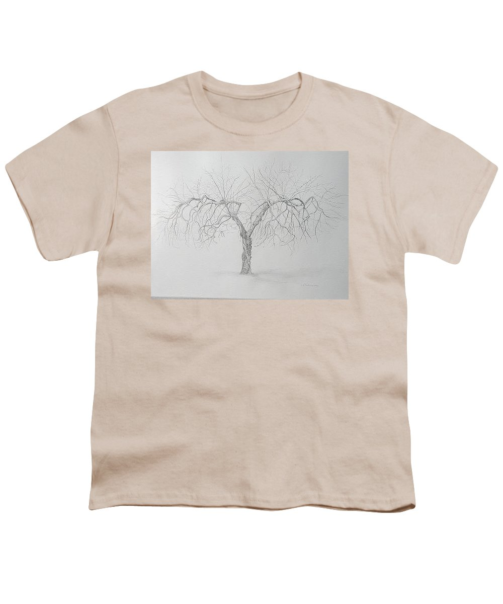 Cortland Apple Tree Youth T-Shirt featuring the drawing Cortland Apple by Leah Tomaino