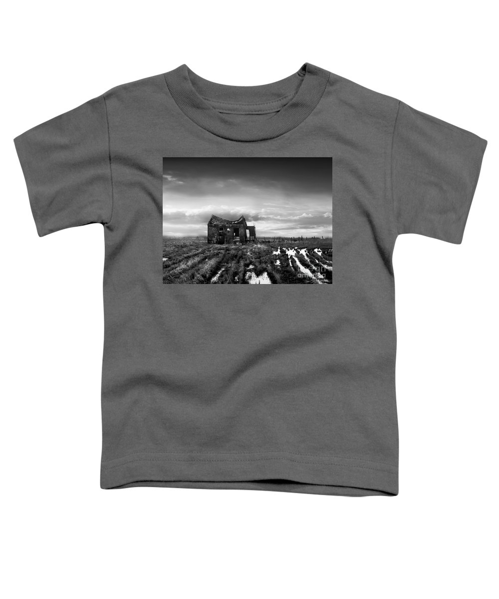 Architecture Toddler T-Shirt featuring the photograph The Shack by Dana DiPasquale
