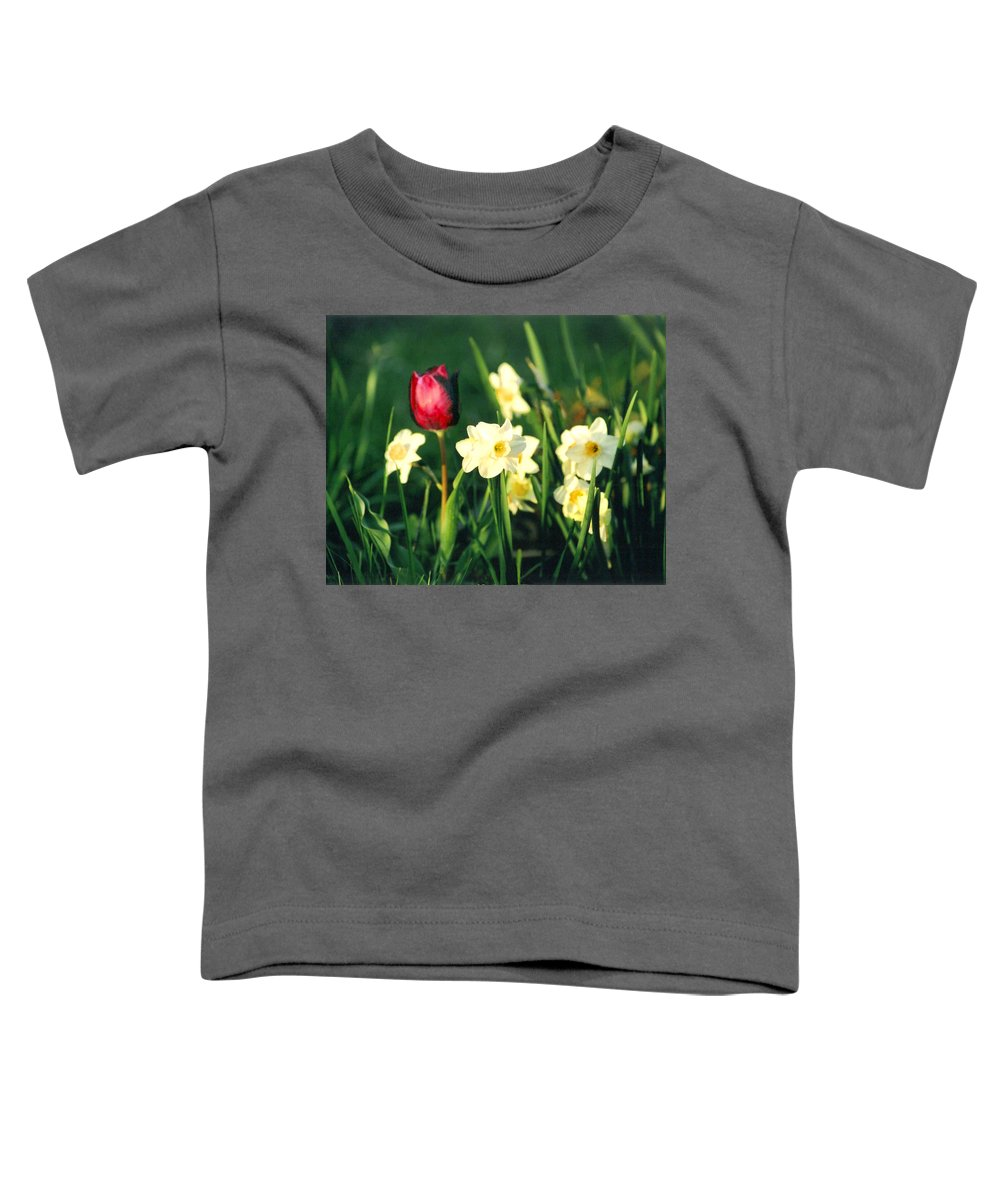Tulips Toddler T-Shirt featuring the photograph Royal Spring by Steve Karol