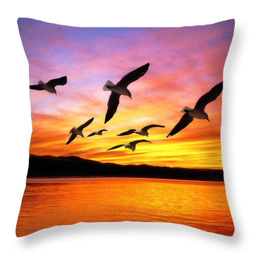 Seagull Sunset Throw Pillow For Sale By Gravityx Designs