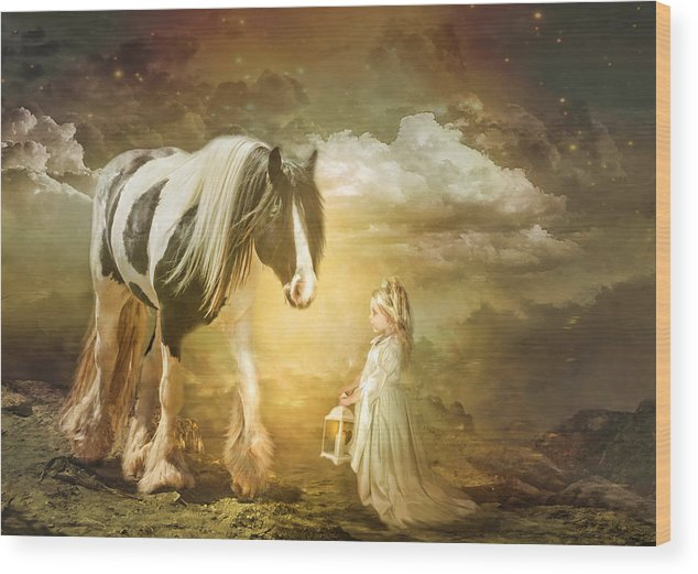 Gypsy Cob Wood Print featuring the photograph By Lantern Light by Trudi Simmonds