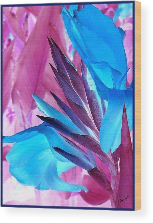 Flower Wood Print featuring the photograph Bird Of Paradise by Jim Darnall