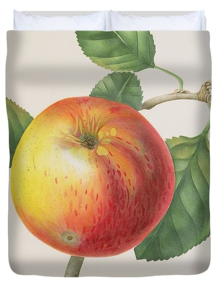 An Apple Duvet Cover by Elizabeth Jane Hill
