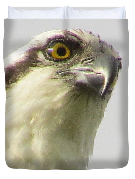 Eye Of The Osprey Duvet Cover by Zina Stromberg