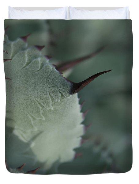 Agave Parryi Truncata - Artichoke Agave - Cactus And Succulents  Maui Hawaii Duvet Cover by Sharon Mau