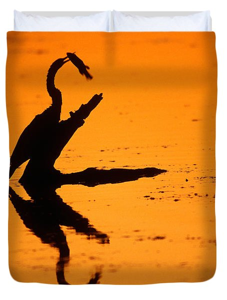 Anhinga Duvet Cover by Art Wolfe