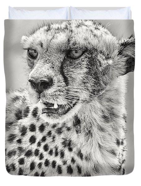 Cheetah Duvet Cover by Adam Romanowicz