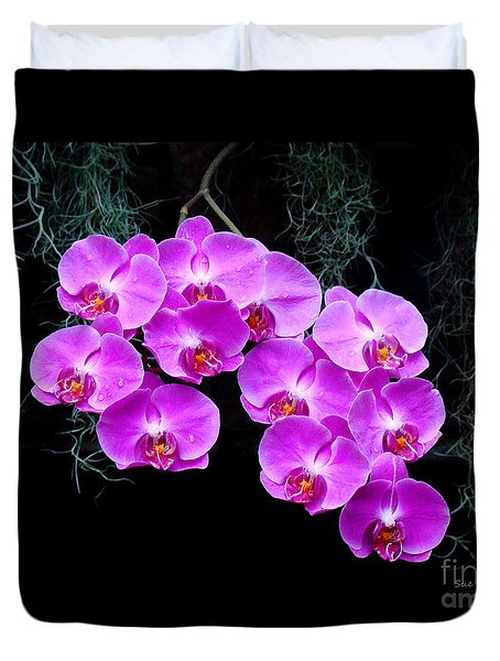 Dew-kissed Orchids Duvet Cover by Sue Melvin