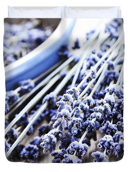 Dried Lavender Duvet Cover by Elena Elisseeva