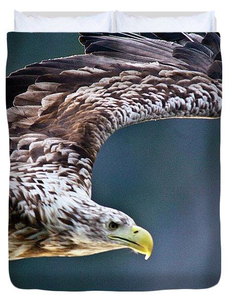 European Sea Eagle Duvet Cover by Heiko Koehrer-Wagner