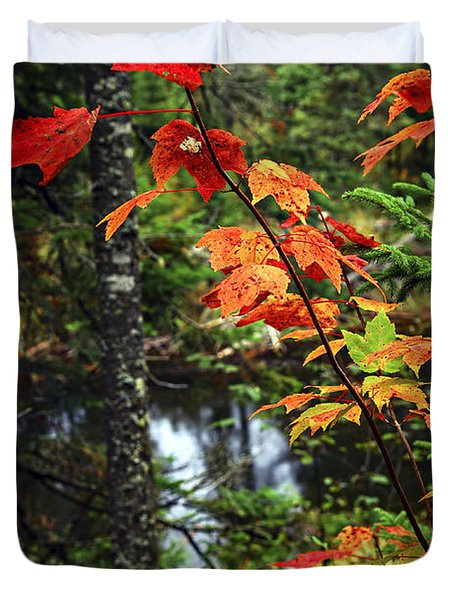 Fall forest and river Duvet Cover by Elena Elisseeva