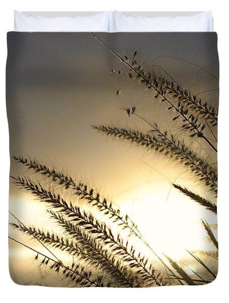 field of dreams Duvet Cover by Laura  Fasulo