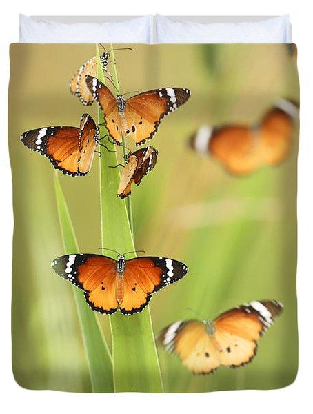 Flock Of Plain Tiger Danaus Chrysippus Duvet Cover by Alon Meir