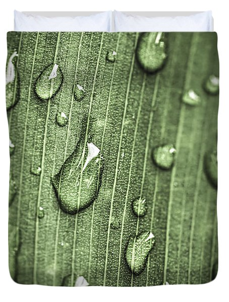 Green leaf abstract with raindrops Duvet Cover by Elena Elisseeva