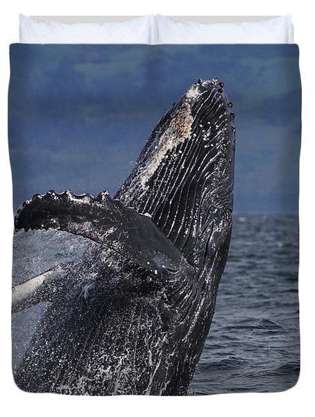 Humpback Whale Breaching Prince William Duvet Cover by Hiroya Minakuchi