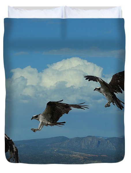 Landing Pattern Of The Osprey Duvet Cover by Ernie Echols