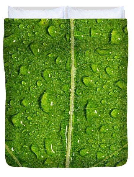 Leaf Dew Drop Number 12 Duvet Cover by Steve Gadomski