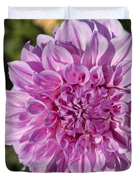 Pink Dahlia Duvet Cover by Peter French