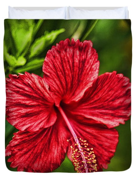 Red Hibiscus Duvet Cover by Wendy Townrow