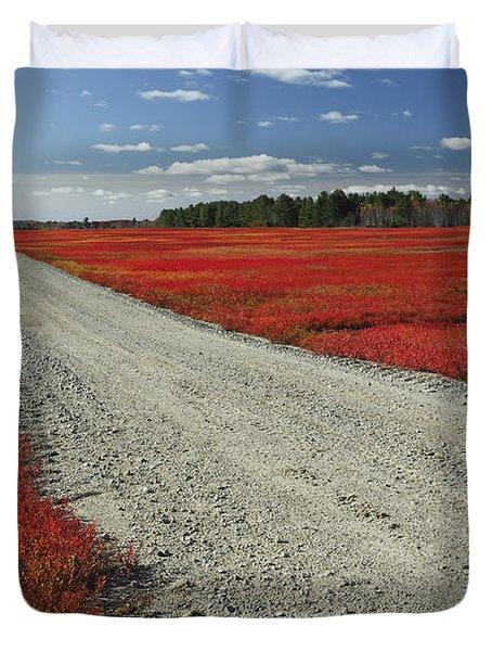 Road Through Autumn Blueberry Maine Duvet Cover by Scott Leslie